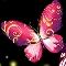 Butterfly Jewel