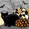Black Cat Capers