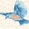 Bluebird Gathering - Closeout