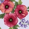 Poppy Panache - Closeout