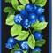 Blueberry - Overstock Sale!