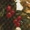 Harvest & Holiday 2015