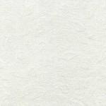 TT-Hue-C2368-White-Shells