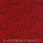 Hoff-G8556-78G-Scarlet-Gold