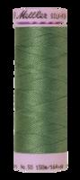 Mett-104-540-Asparagus