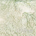 Hoff-Q2166-N115-New-Grass