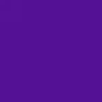 AEN-Flannel-Grape-S08