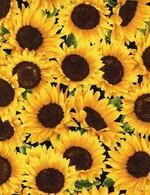 TT-Fleur-C5253-Sunflower