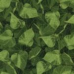 TT-Glory-CM4973-Green