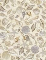 TT-Beach-C5353-Shells